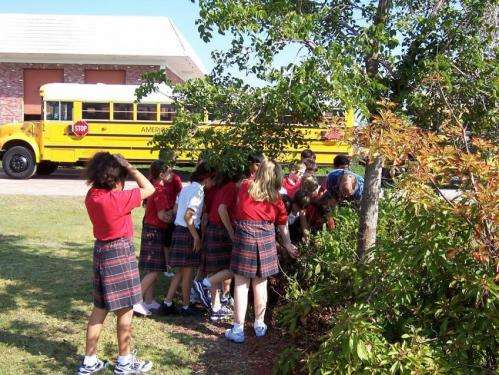 Middle school students introduced to arboriculture topic