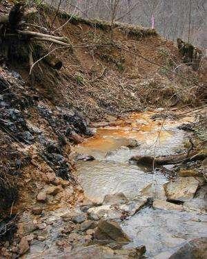 Mining can damage fish habitats far downstream, study shows