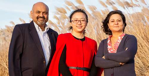 Model evaluates where bioenergy crops grow best