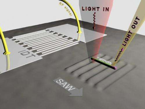 Moving light across a semiconducting nanowire via surface acoustic waves