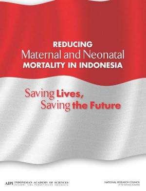 NAS report: Make childbirth safer in Indonesia