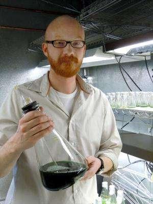 Natural citrus scent may produce renewable solvents, fuel