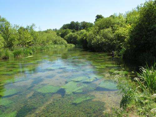 Not so dirty: Methane fuels life in pristine chalk rivers
