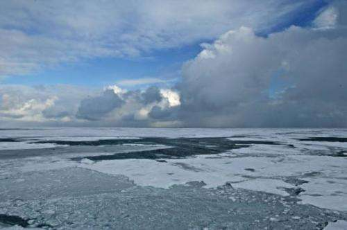 Ocean circulation explains why the Arctic affected by global warming more than the Antarctic