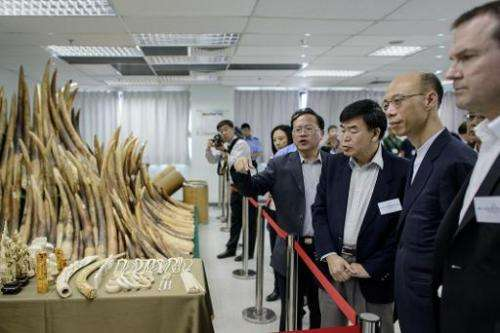 Officials and guests including Hong Kong Secretary for the Environment Wong Kam-sing (2nd R) are shown seized ivory displayed in