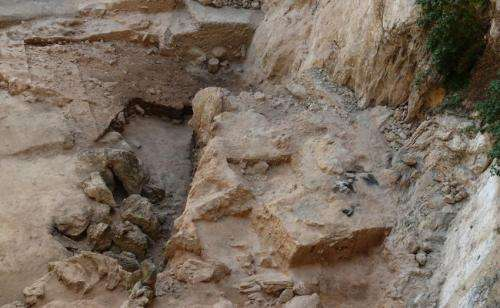 Oldest human poop provides dietary insights
