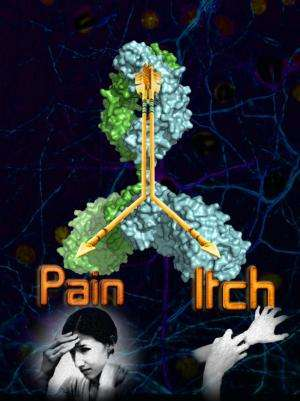 One molecule to block both pain and itch
