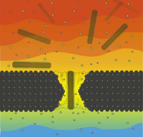 Penn team studies nanocrystals by passing them through tiny pores