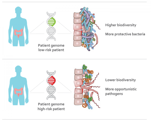 People may inherit 'gut' bacteria that cause Crohn's disease and ulcerative colitis
