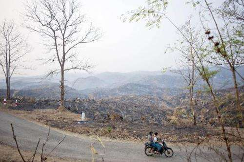 People ride a bike past burnt a teak tree forest in Bago region on April 5, 2014