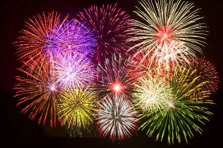Pet owners urged to take firework precautions early