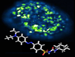 Photopharmacology: Optical control of insulin secretion