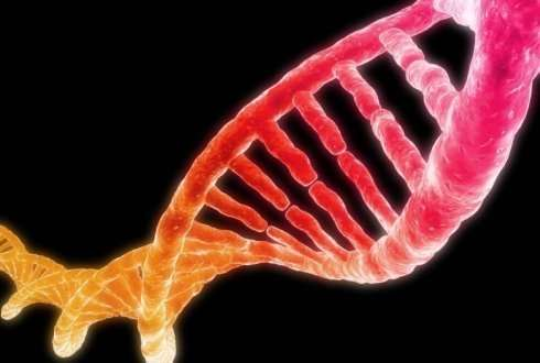 Plants can 'switch off' virus DNA