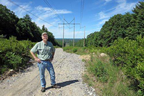 Power lines offer environmental benefits