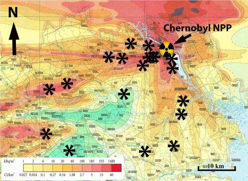Radiation damage at the root of Chernobyl's ecosystems