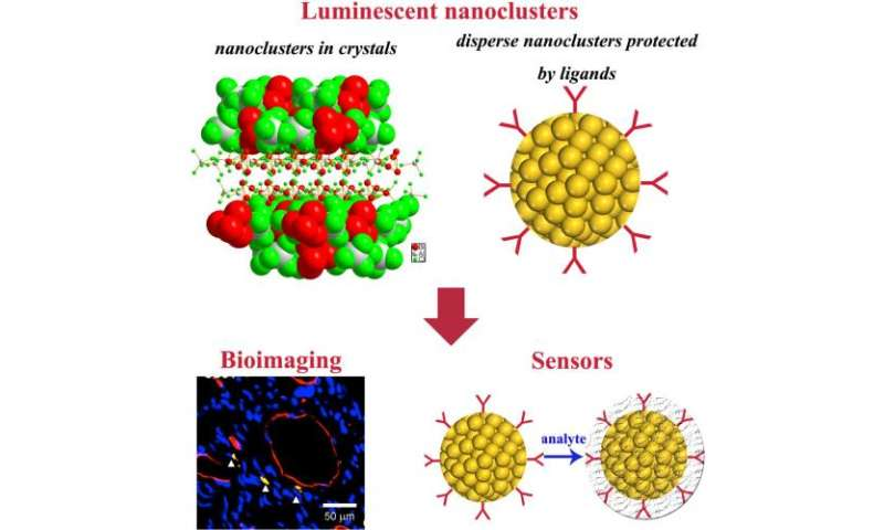 Recent advances in the controlled synthesis and functional applications of luminescent metal nanoclusters