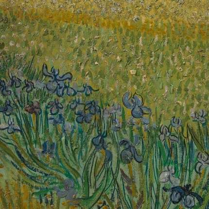 Red colour slowly disappearing from Van Gogh's paintings