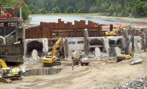 Rivers recover natural conditions quickly following dam removal