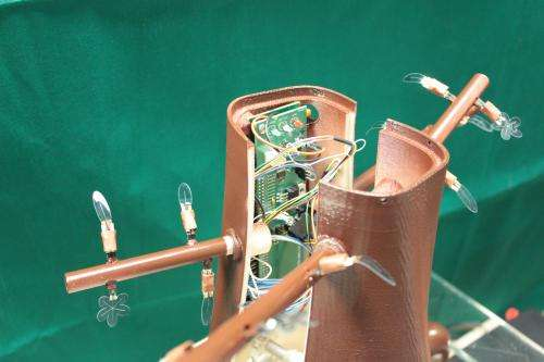 Robotic solutions inspired by plants