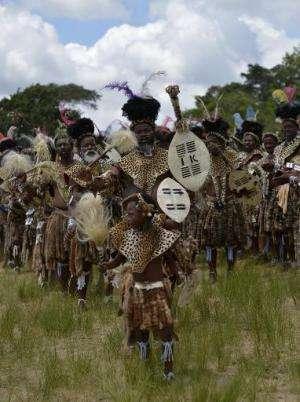 Shembe men, members of the Shembe Church (Nazareth Baptist Church), a traditionalist Zulu church, clad in leopard-skin, dance du