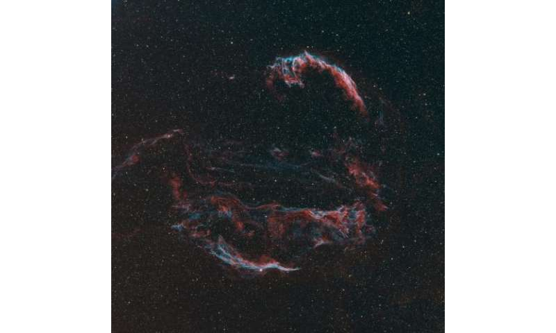 Shocks in the Cygnus Loop Supernovae Remnant
