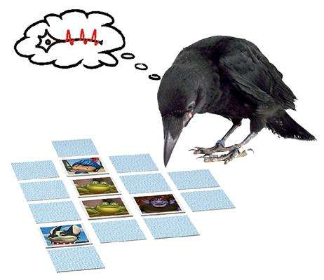 Short-term memory of crows relies on different neural mechanisms than humans