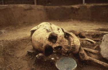 Siberian Bronze Age skull reveals secrets of ancient society