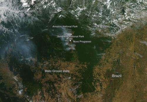 Signs of deforestation in Brazil