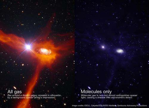 Silhouettes of early galaxies reveal few seeds for new stars