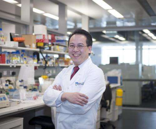 Solution to platelet 'puzzle' uncovers blood disorder link