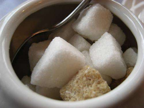 Sweet enough? Separating fact from fiction in the sugardebate