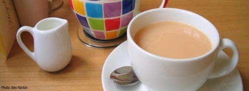 Tea and citrus products could lower ovarian cancer risk