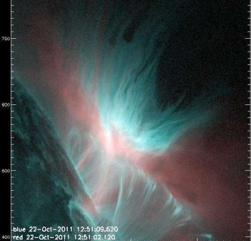 The dark fingers of the solar atmosphere