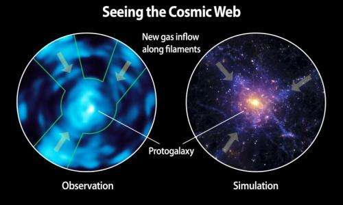 The intergalactic medium unveiled: Caltech's Cosmic Web Imager