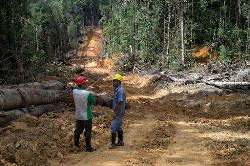 Timber workers chat along a dirt road in the forests in Berau, East Kalimantan, November 13, 2013