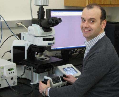 Study IDs new cause of brain bleeding immediately after stroke
