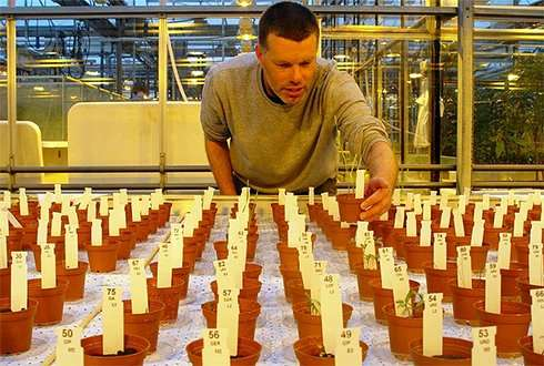 Vegetables on Mars within ten years?