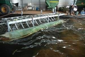 Wave power technology crests economical limits