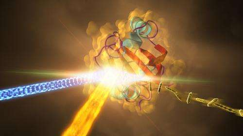 X-ray laser reveals how bacterial protein morphs in response to light