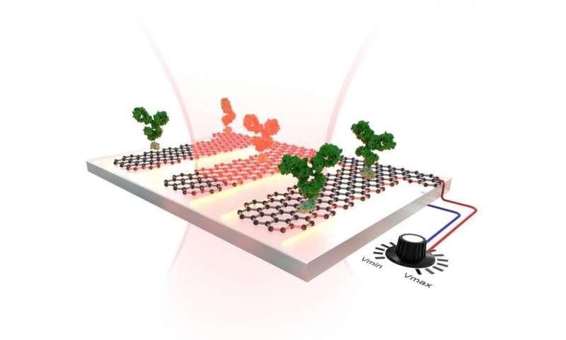 A graphene-based sensor that is tunable and highly sensitive