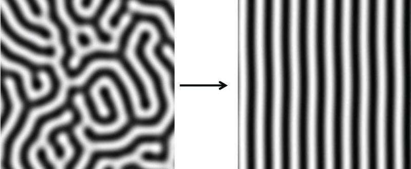 A mathematical model for animal stripes