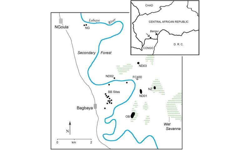 Archaeology and Conservation in the Tropical Forests of the Central African Republic