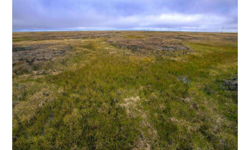 A simpler way to estimate the feedback between permafrost carbon and climate