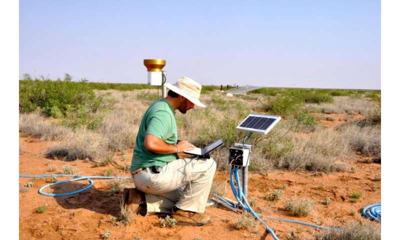 ASU study finds weather extremes harmful to grasslands