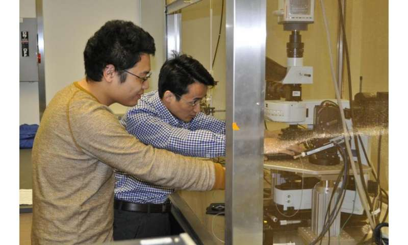 Bonelike 3-D silicon synthesized for potential use with medical devices