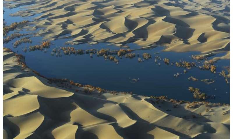 'Carbon sink' detected underneath world's deserts