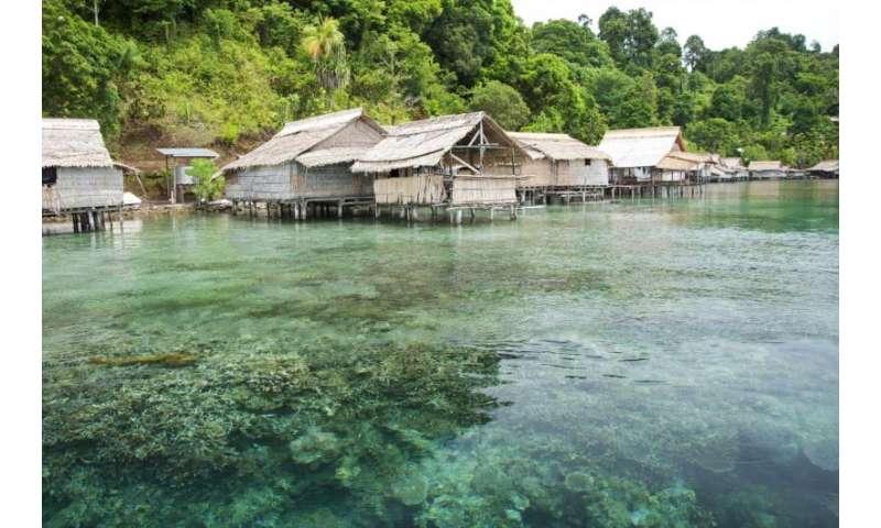 Climate impacts on marine biodiversity