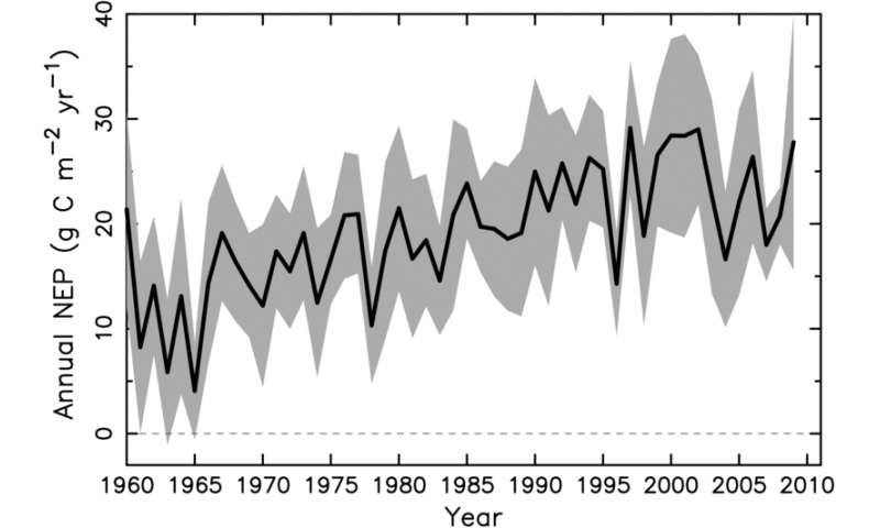 Climate models disagree on strength of carbon land sink across northern Eurasia
