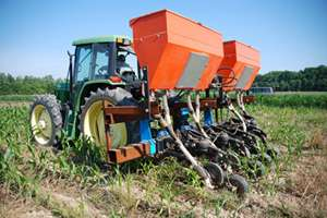 Covering the bases with cover crops