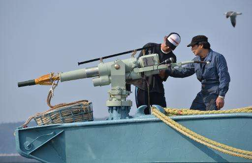 Crew of a whaling ship check a whaling gun or harpoon before their departure from Ayukawa port in Ishinomaki City, Japan on Apri